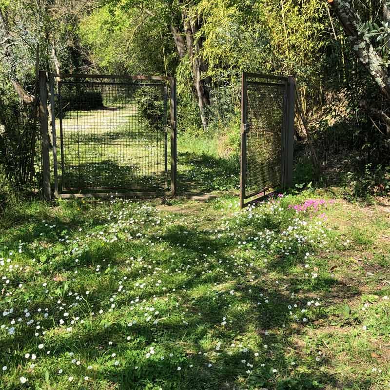 Springtime at Villa Il Palmerino